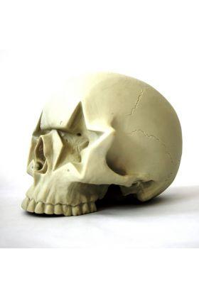 Star Skull - Ron English